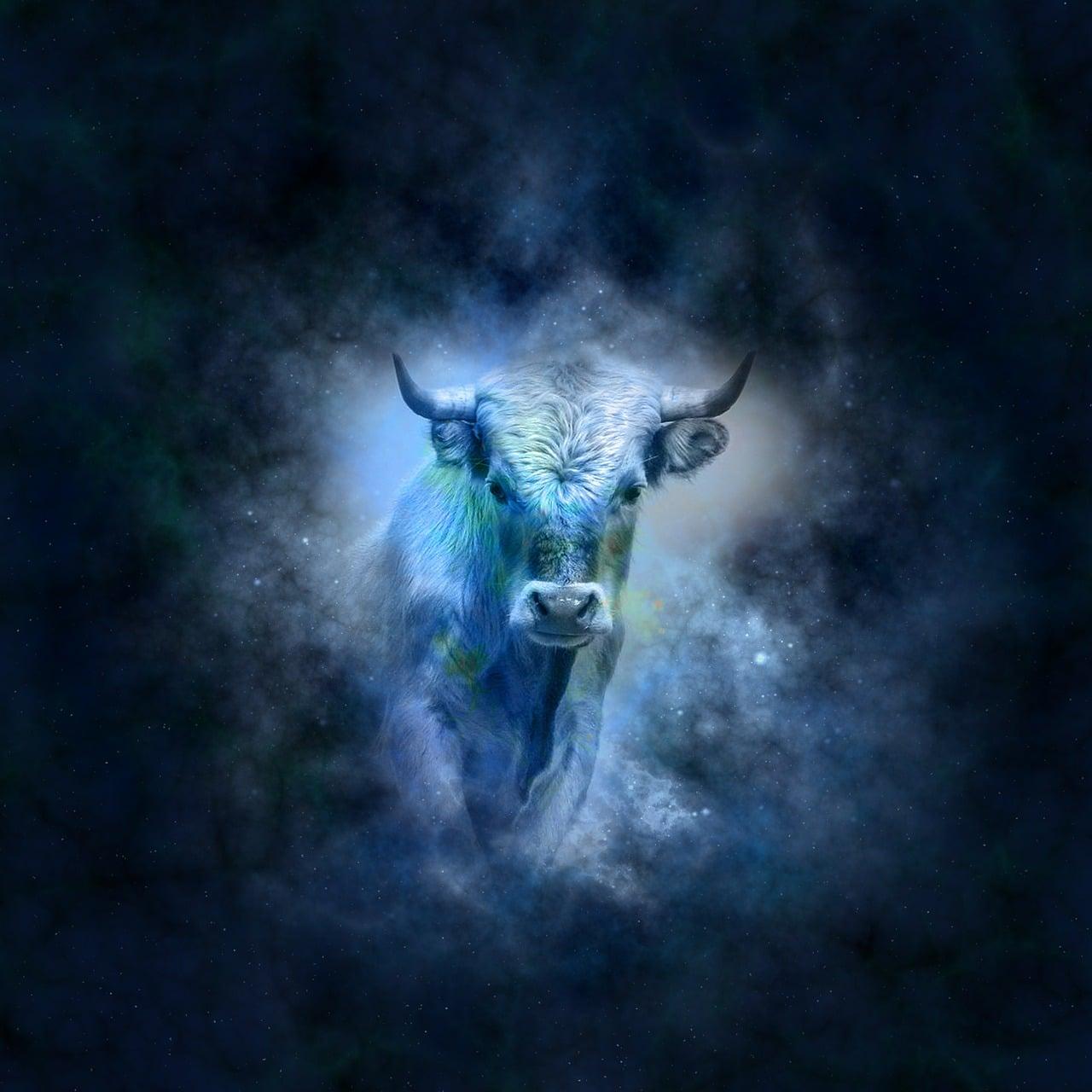 Horoscope du jour taureau